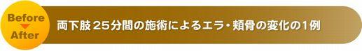title_002 (3).jpg
