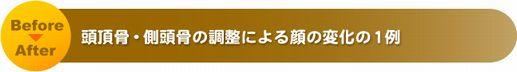 title_006 (2).jpg